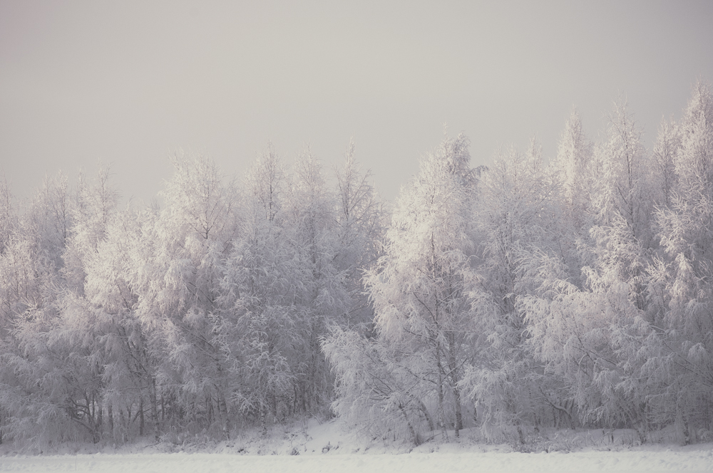 'Frozen' - Finland 2014, winter landscape by Kimmo Savolainen Photography.